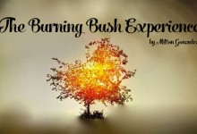 The Burning Bush Experience